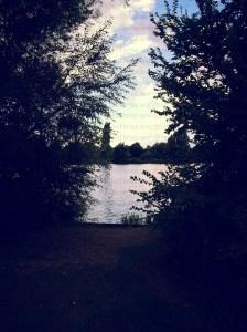 stanborough lake-hertfordshire -united kingdom